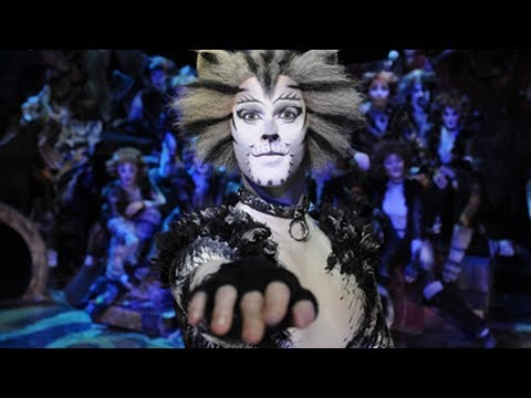 hit musical cats to tour 13 chinese cities