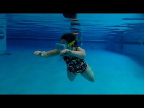 dutch nonprofit 'the dolphin swim club'