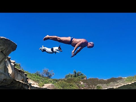 pet jack russell 'titti' jumps from rocks with her owner